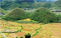 Du lịch Hà Giang ngắm tam giác mạch đầu mùa rực rỡ