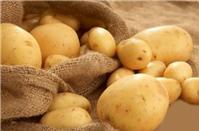 Đẹp toàn diện với tác dụng tuyệt vời từ khoai tây