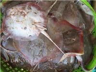 Về biển Bạc Liêu, thưởng thức cá đuối vùi muối ớt