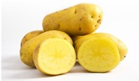 Ăn khoai tây 4 lần một tuần làm tăng nguy cơ huyết áp cao