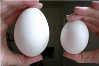 Bà bầu ăn trứng ngỗng như thế nào mới đúng?