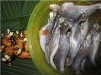 Cá chốt thấm đượm vị quê xứ Bạc Liêu