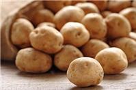 Để khoai tây không bị mọc mầm