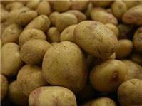 Người cao huyết áp nên ăn khoai tây