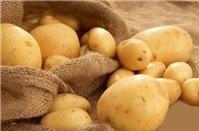 Tại sao không bao giờ được để khoai tây trong tủ lạnh?