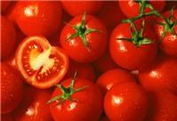 Hướng dẫn các bài thuốc từ cà chua