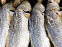 Khô cá sửu mặn chưng cách thủy với thịt ba rọi bằm
