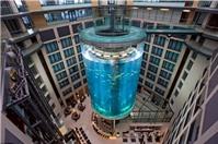 Bể cá có cả thang máy bên trong