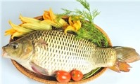 Bài thuốc quý từ cá chép cho bà bầu