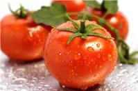 Thói quen ăn cà chua nên tránh để không gây ngộ độc