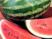 Bốn loại rau quả dưỡng tâm trong mùa hè