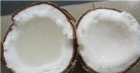 Trái cây đặc sản miền Tây: Hàng hiếm