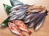 Bà bầu ăn cá quá nhiều:Thủy ngân trong thai vượt ngưỡng