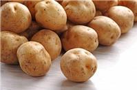 Giúp chị em phân biệt khoai tây Trung Quốc và khoai tây Đà Lạt