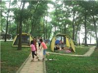 5 điểm dã ngoại đi về trong ngày gần Hà Nội cho gia đình có trẻ nhỏ